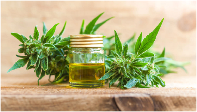Hemp Oil for Anxiety: What You Need To Know