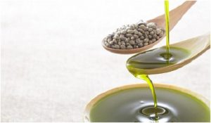 Hemp Oil Benefits, hemp oil for pain, hemp oil benefits for skin, How to benefits hemp oil for pain, hemp oil benefits cancer, hemp oil benefits for hair,